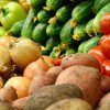 Famous in Primorye surazhevskih vegetables become 2 times more