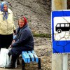 On March 30 in Vladivostok begins the movement of buses on routes dacha