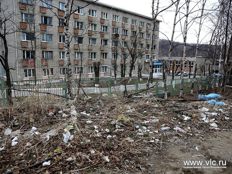 Igor Pushkarev was dissatisfied with the state of health of the city and demanded the immediate start of the general cleaning of
