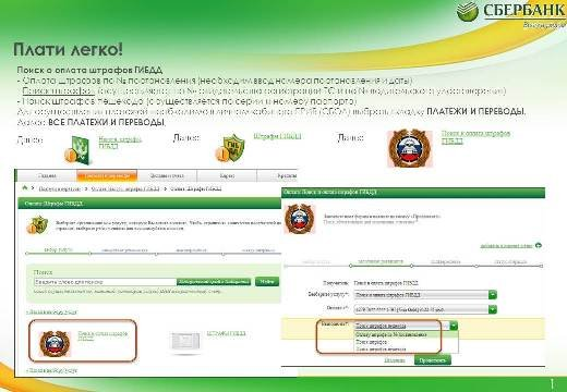 Now the Far East can find debt to the Federal Tax Service directly to Sberbank Online Tax on