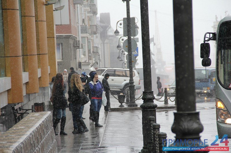 On Tuesday, a new cyclone will bring in Primorye snow and wind