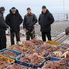 Border guards detained seafood lover in Primorye