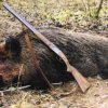 Penalties for poaching in Russia increased by 10 times