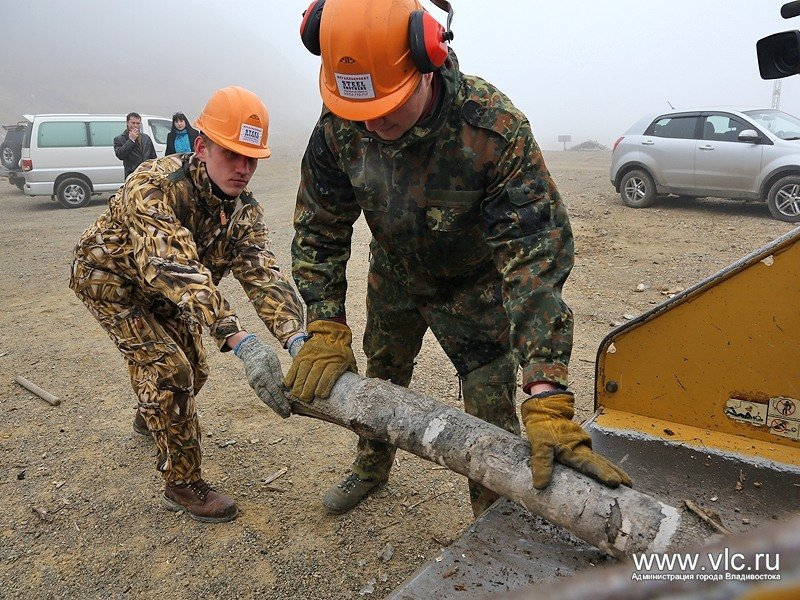 Vladivostok established recycling wood waste into fuel briquettes
