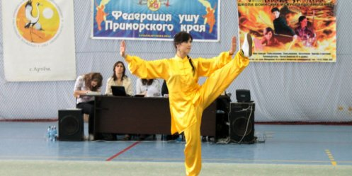 Wushu Cup played in Artem
