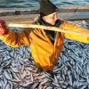 The project of creating a cluster of fish in Primorye approved in Moscow