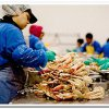 On the beach in Andreevka implemented hazardous to health seafood